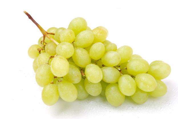 Jaké víno by měl pít člověk, který chce dostat své tělo do formy?
