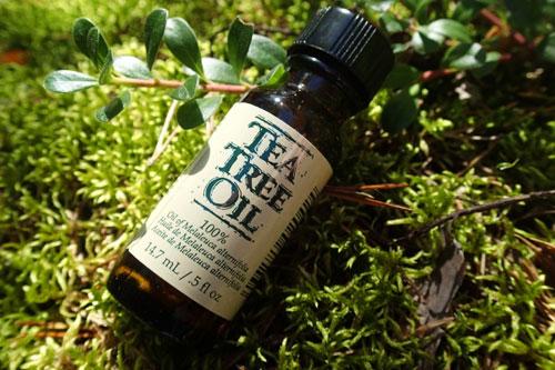 Olej ze stromu, který má antiseptické účinky